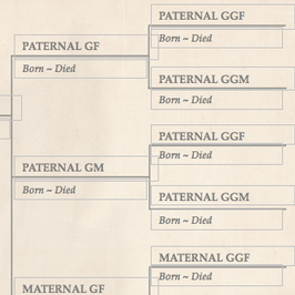 family tree template finder free charts for genealogy tree