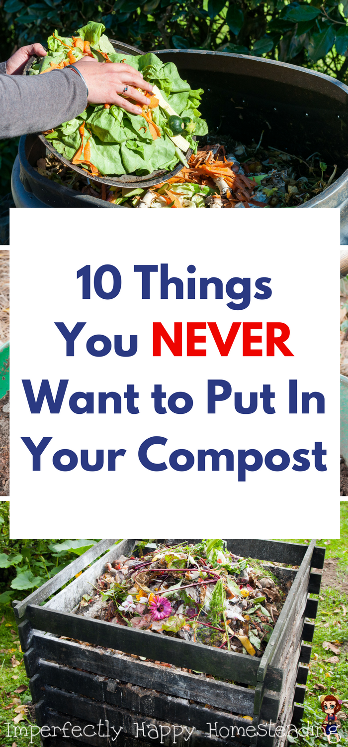 10 Things You NEVER Want to Put in Your Compost. | Green ...