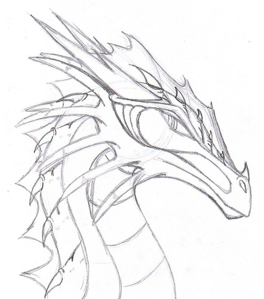 realistic dragon drawings - Google Search | To Draw ...