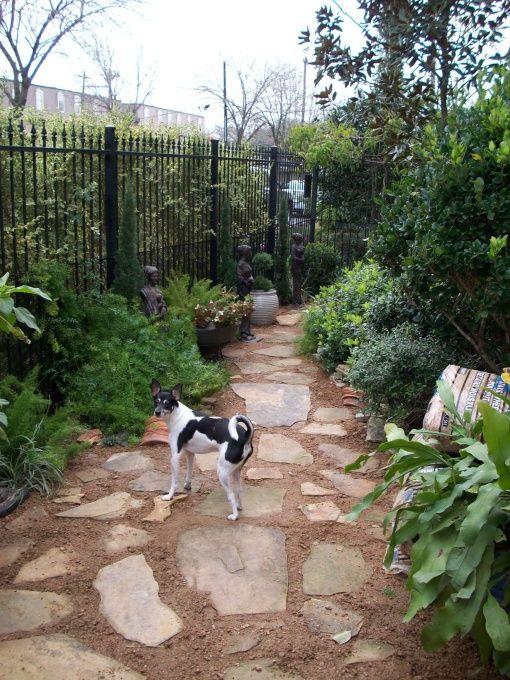 flagstone dog friendly backyard