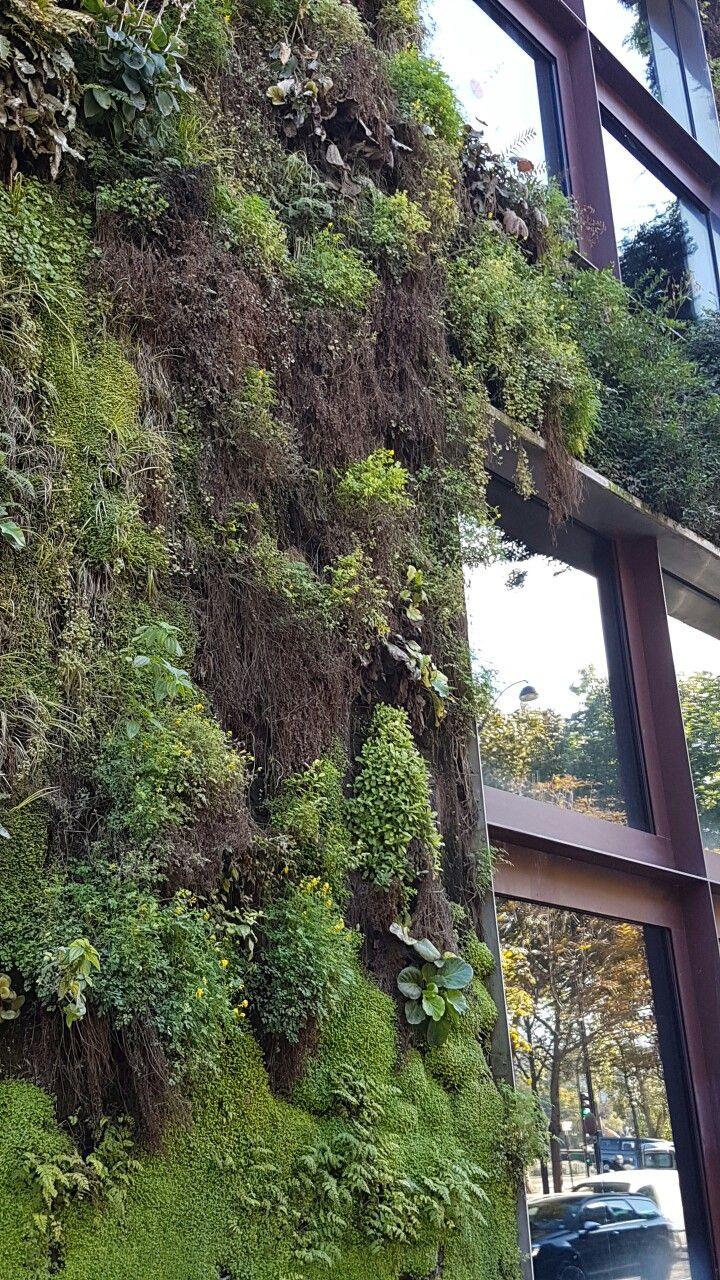 magnifique mur végétalisé du quai branly #museeduquaibranly