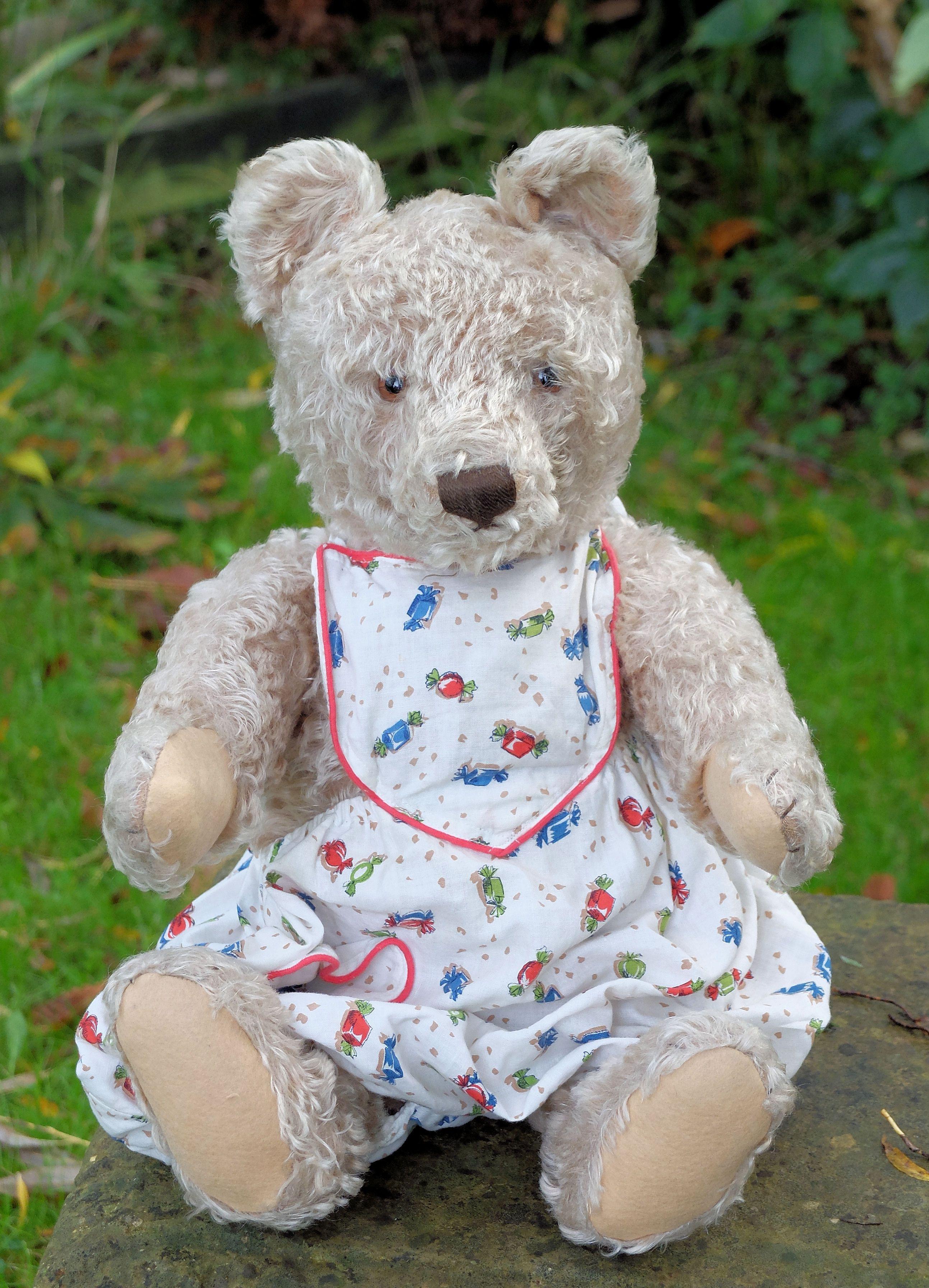 fabulous large old Steiff teddy bear for sale.. worldwide