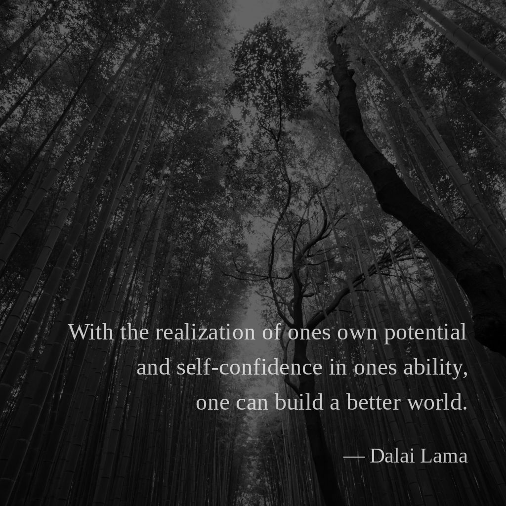 With the realization of ones own potential and self-confidence in ones ability, one can build a better world. —Dalai Lama