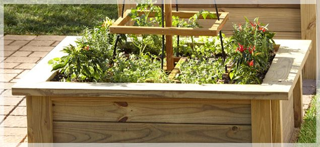 Extra Wide Edges To Sit On Raised Garden Raised Garden Beds