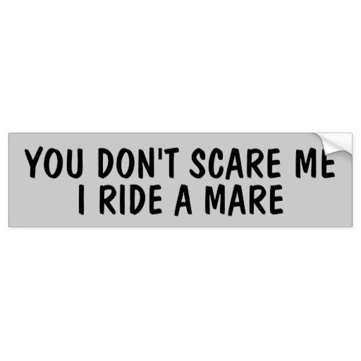 You dont scare me i ride your horse trailer bumper sticker