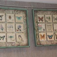 Cuadro de mariposas en pozuelodetiendas.es