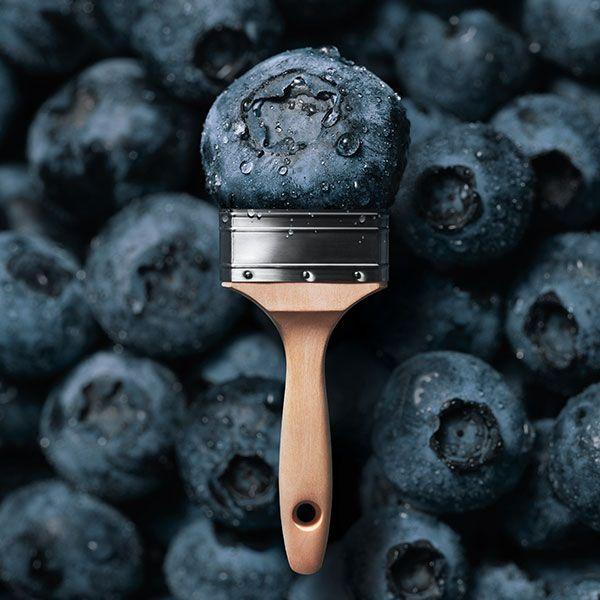 Schöner Wohnen Farbpalette: Trendfarbe Blueberry – SCHÖNER WOHNEN-FARBE