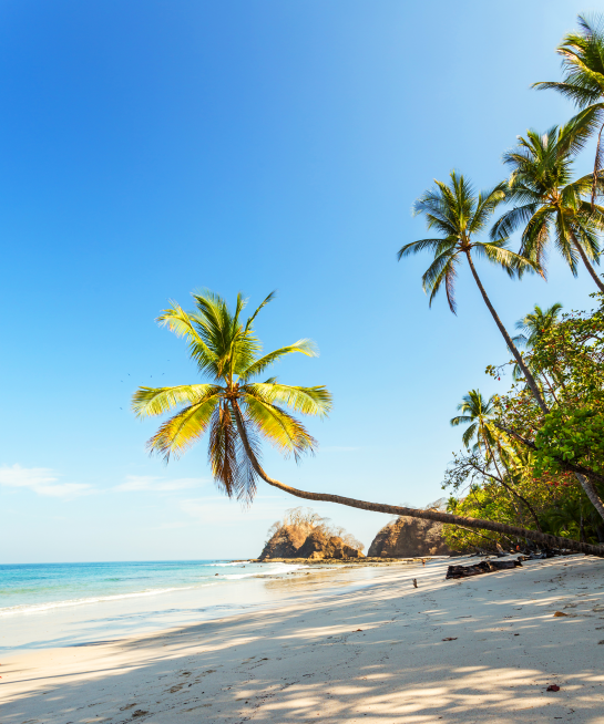 5 beaches to book for summer vacations