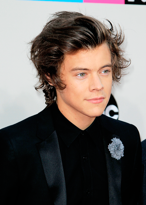 Harry Styles Harry Styles Hair Harry Styles Harry Styles 2013