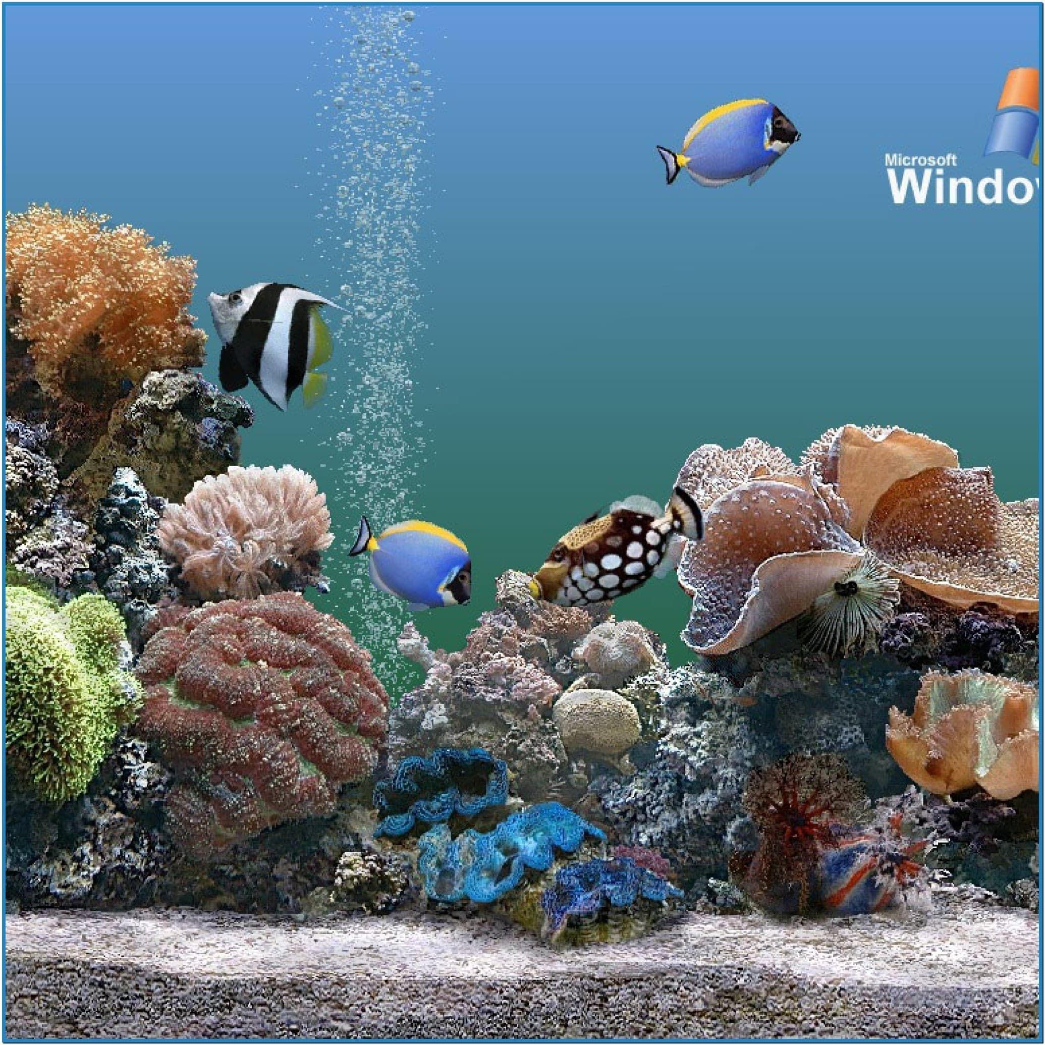 Aquarium Wallpaper IPad U2013 Free Download