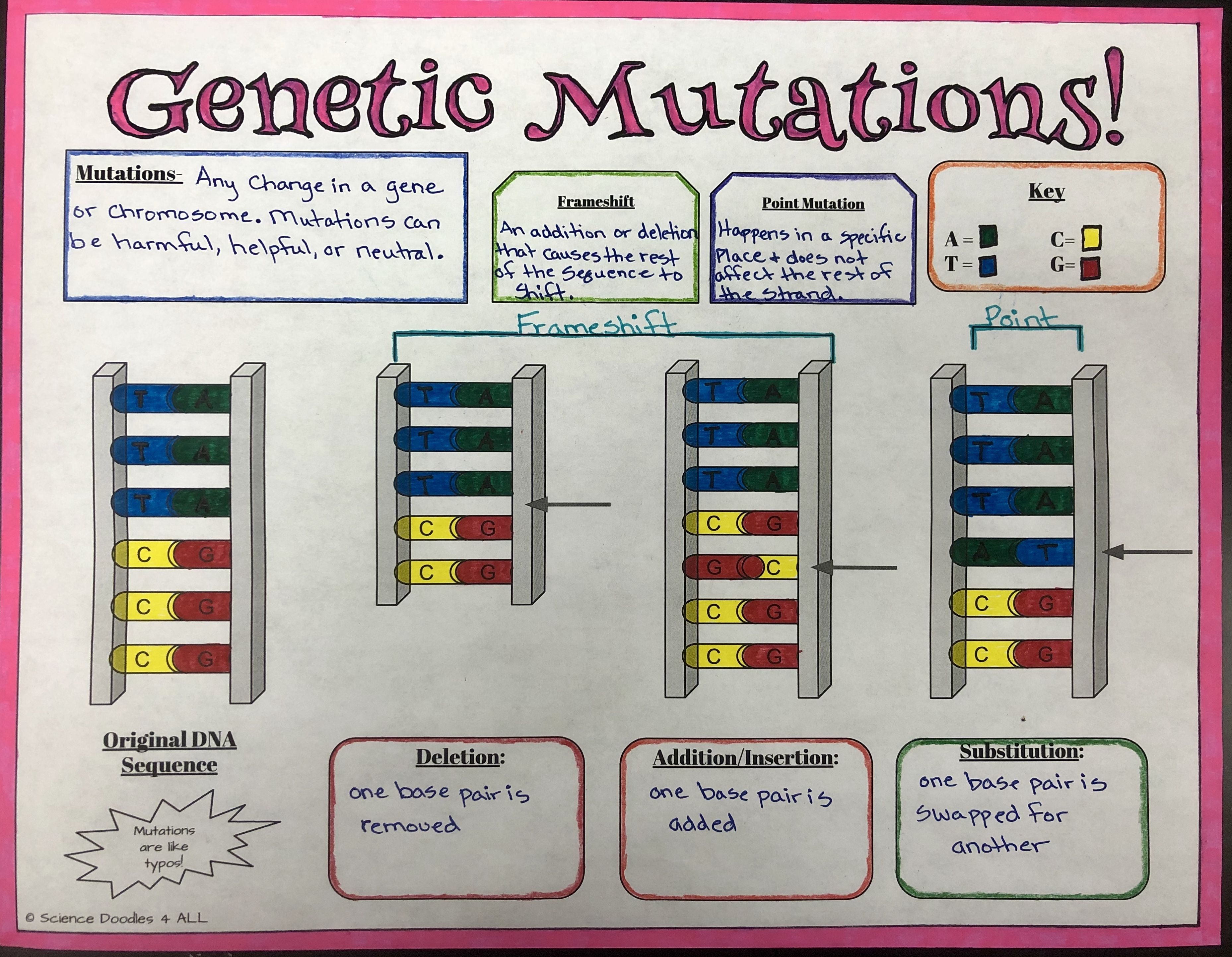 Mutations Graphic Notes Genetics Biology Classroom Biology