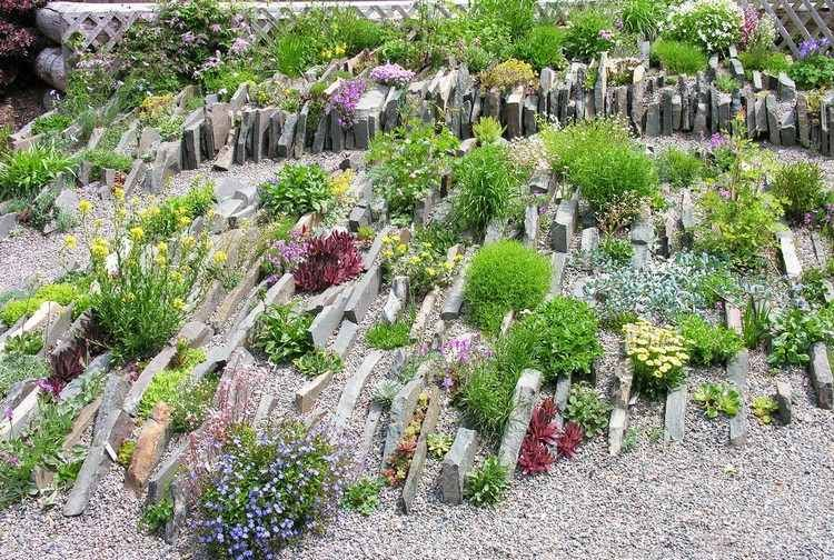 jardin rocaille jardin alpin pierres dco plantes