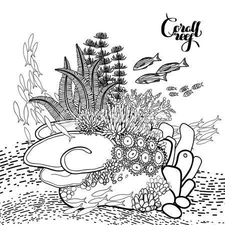 Coral reef design — Vector de stock | Mar | Pinterest | Colorear ...
