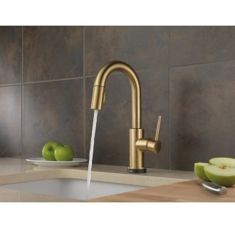 Delta Pull Out Faucet Spray Head