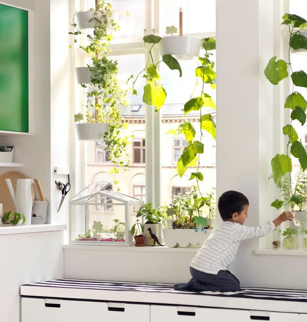 Novit dal catalogo ikea 2016 plants oh my pinterest for Catalogo deco 2016
