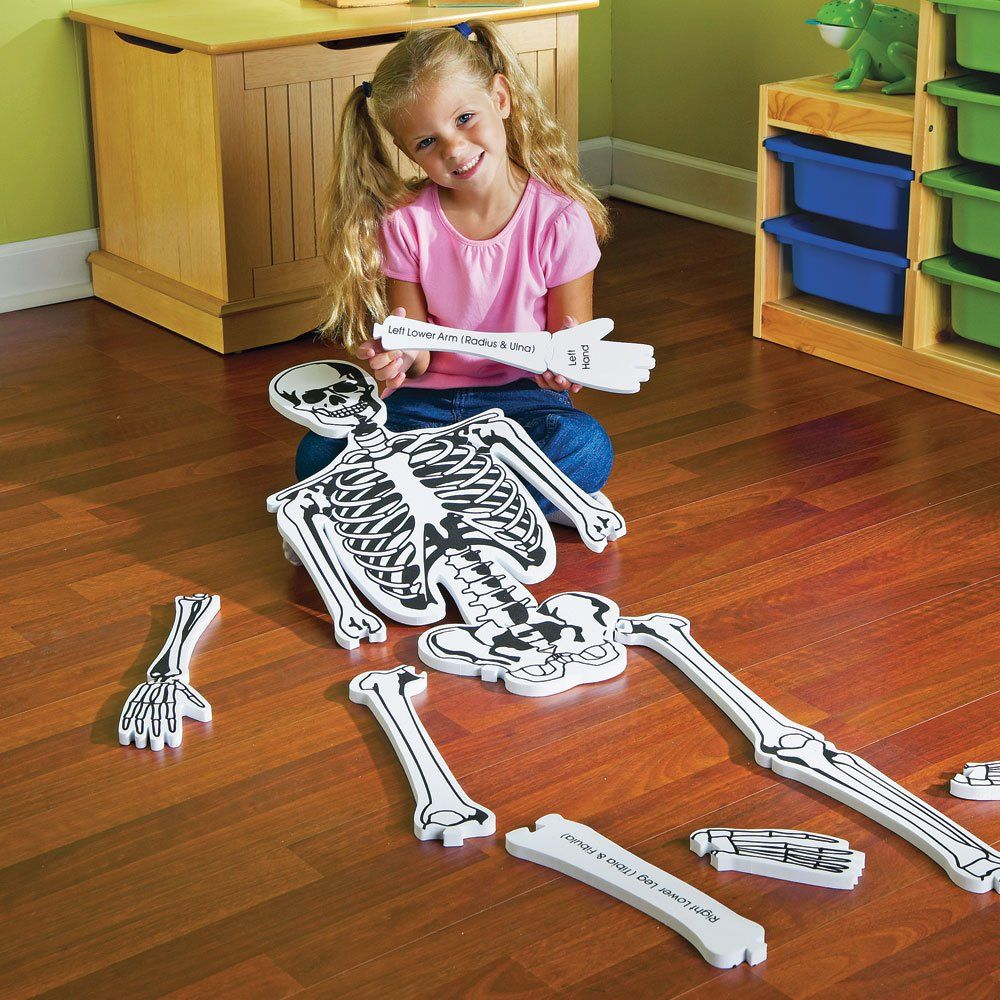 These Human Anatomy Puzzles Are Beautifully Illustrated Human Body Jigsaw Puzzles That Are An Educational And Learning Resources Science For Kids Floor Puzzle