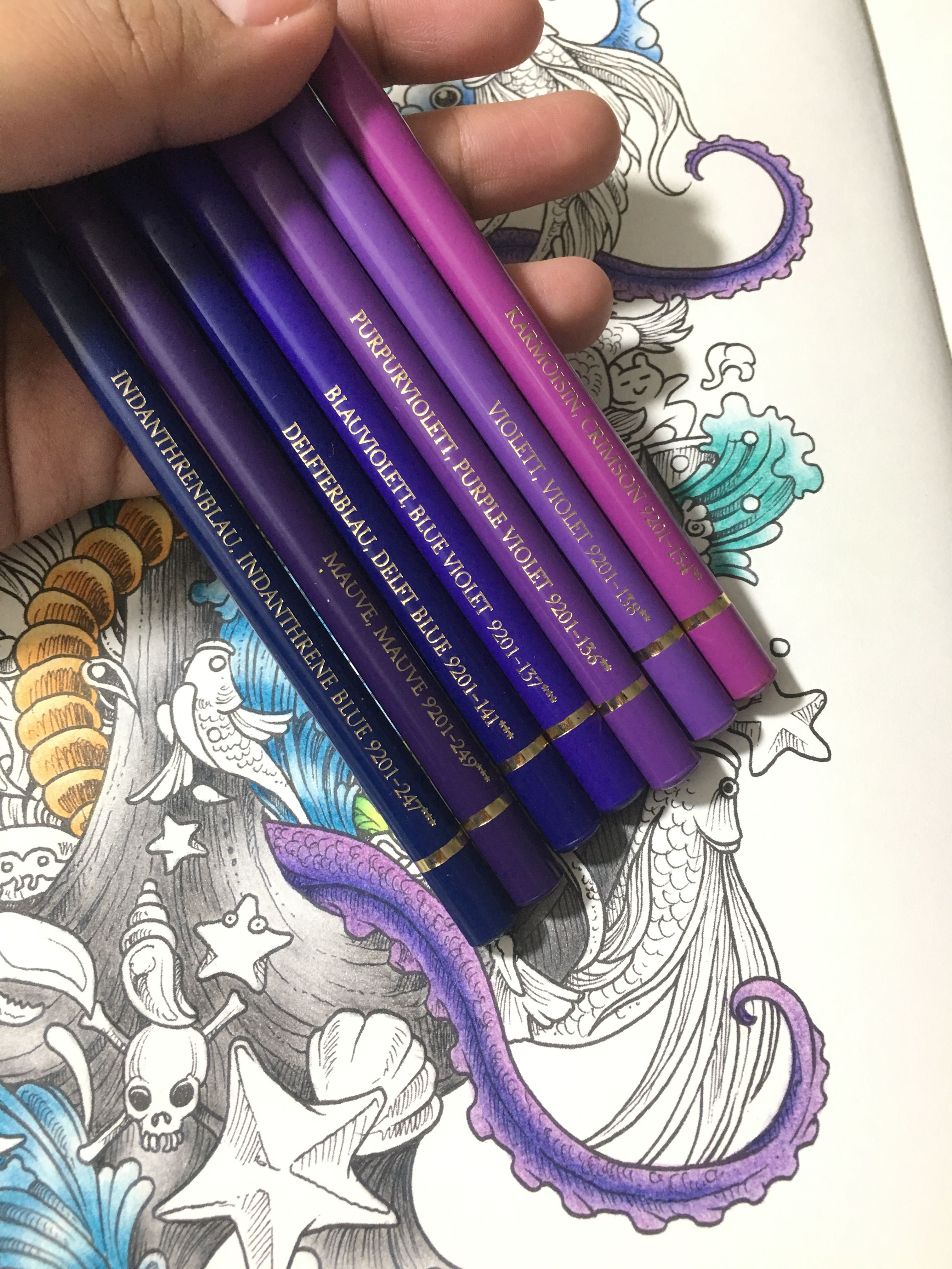 Pin By Kezia Johnson On Polychromos Combos