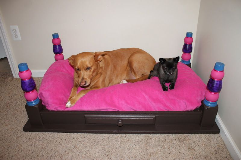Pin By Phoebe Caulfield On Dogs Rule Diy Dog Bed Pallet Dog Beds Puppy Beds