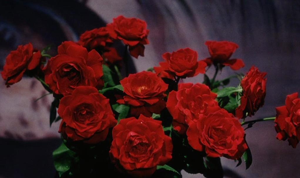 Fruits Of Passion  Shji Terayama, 1981  Flowers, Red -9049