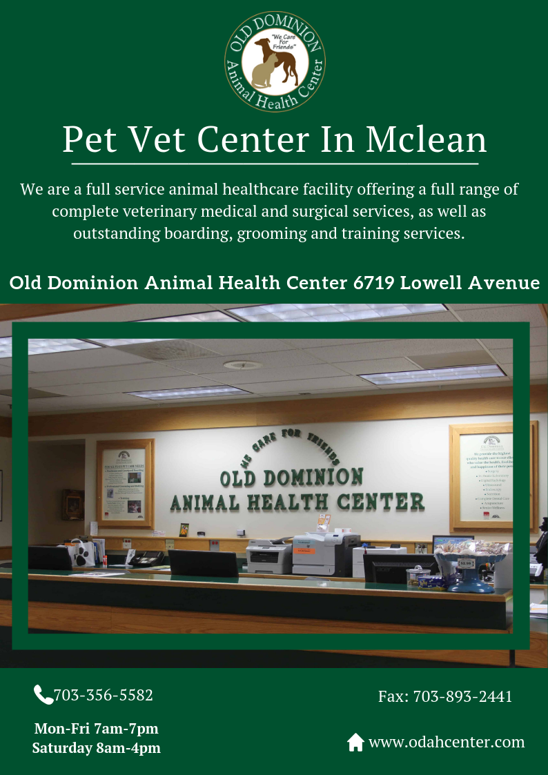 ODAH Center will take care and look after your pet family
