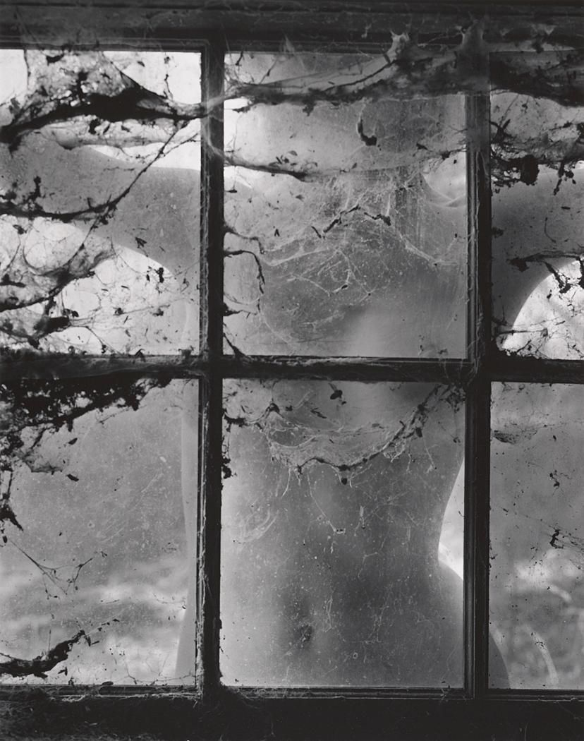 WYNN BULLOCK  1902 - 1975 Nude behind Cobwebbed Window Date:1955