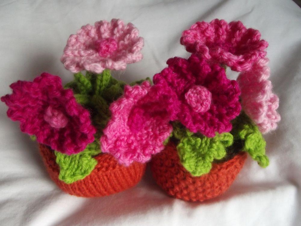 Knitting Flowers Crochet : Knitted plants flowers gerbera
