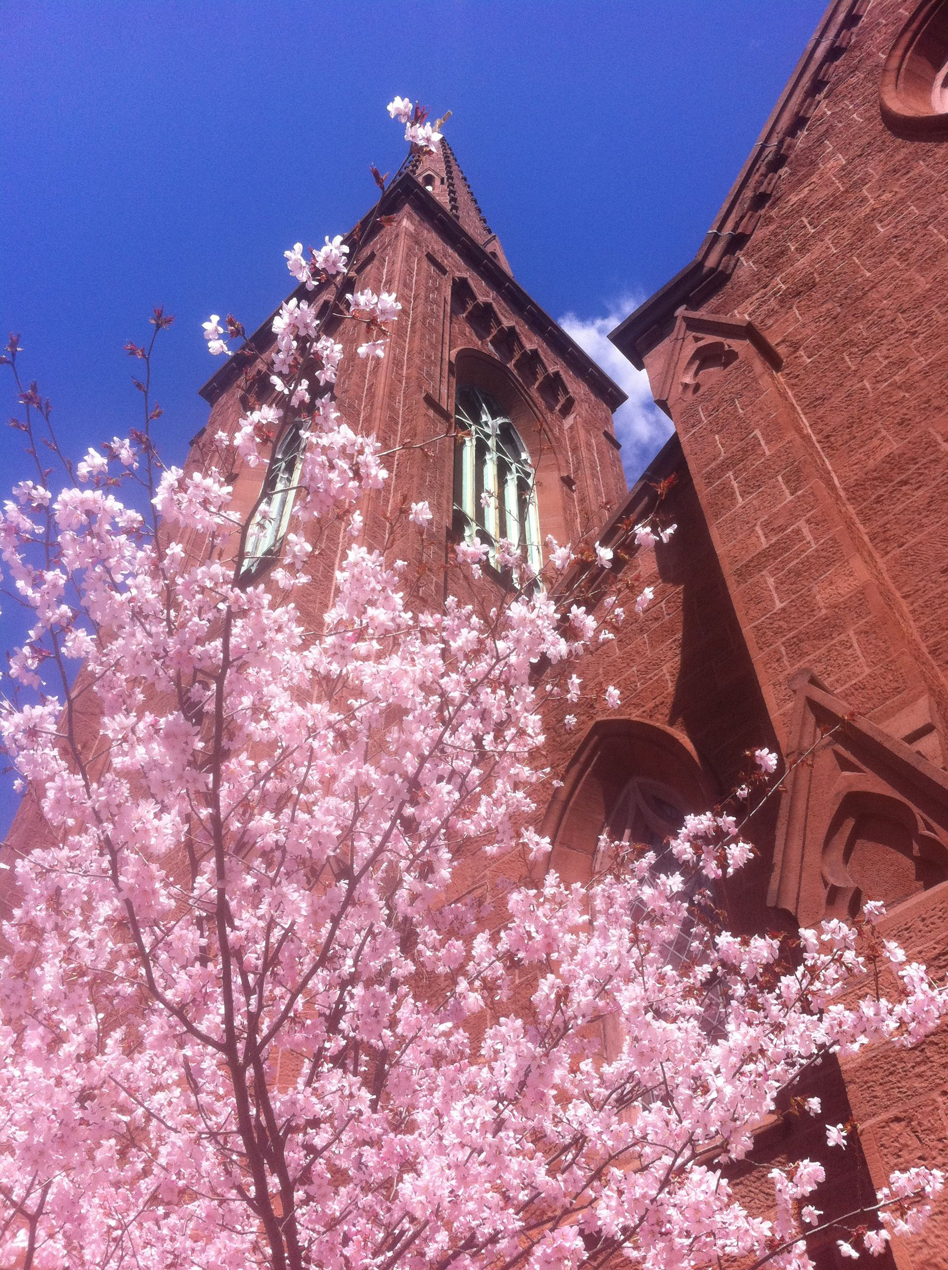 Easter at st james episcopal church church news