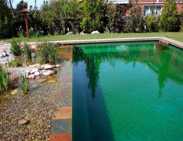 biologischer pool bauen schwimmteich im garten modern kies wasser, Gartenarbeit ideen