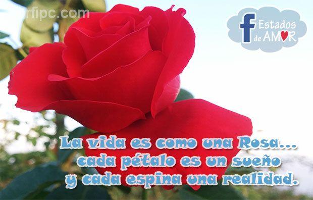 Palabras De Amor Para Actualizar Mi Estado De Facebook Palabras De Amor Frases De Amor Para El Novio Poemas De Amor