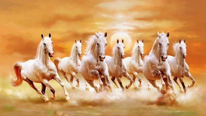Pin By Tarungoyal On Download Horse Wallpaper Horse Canvas