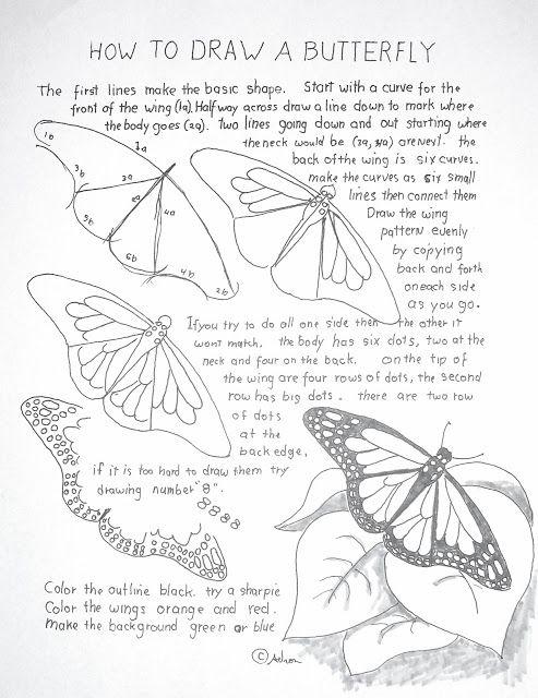 Dessin dessiner un papillon ou des ailes de f es - Papillon facile a dessiner ...
