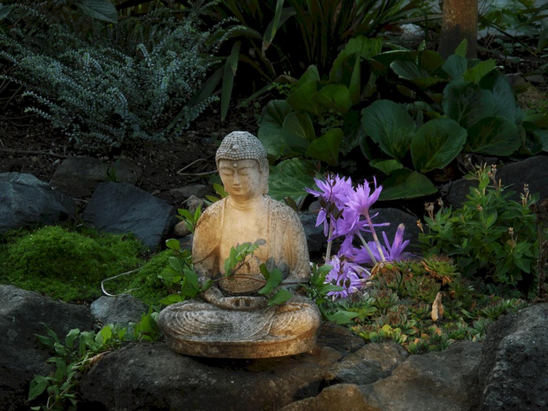 Concrete Buddha Garden Statue (Concrete Buddha Garden Statue) design ideas and photos is part of Buddha garden, Garden statues, Zen garden design, Meditation garden, Zen rock garden, Garden - Concrete Buddha Garden Statue