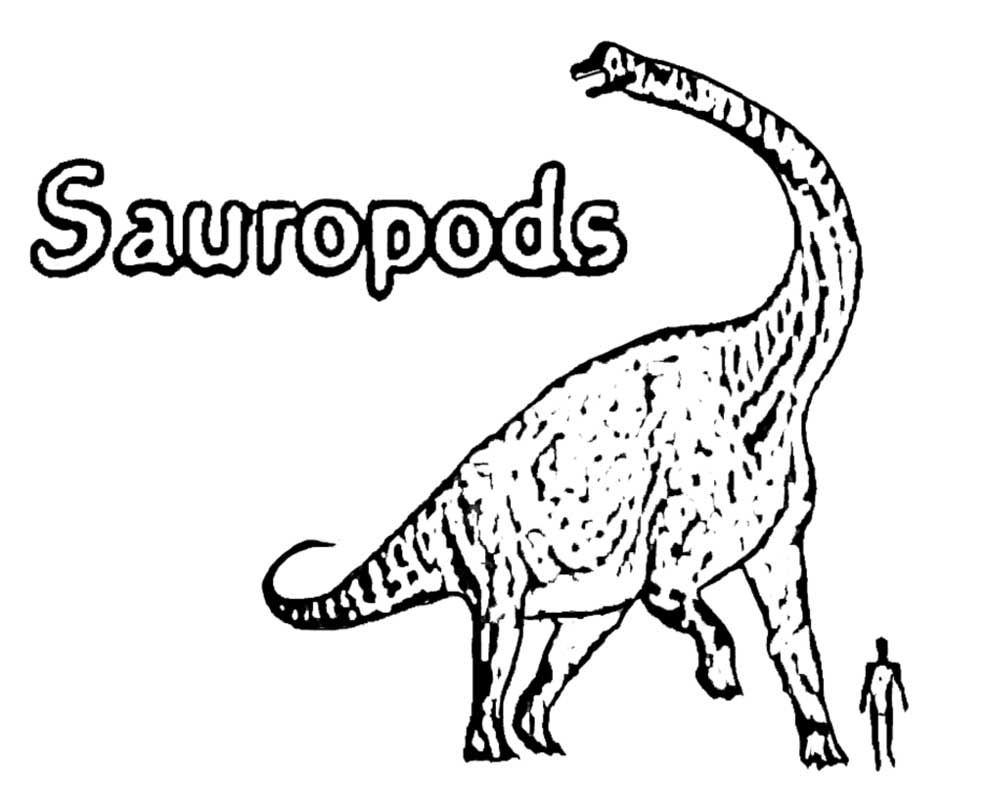 Simple+prehistoric+science+park+Jurassic+world+long+neck+Sauropods+ ...