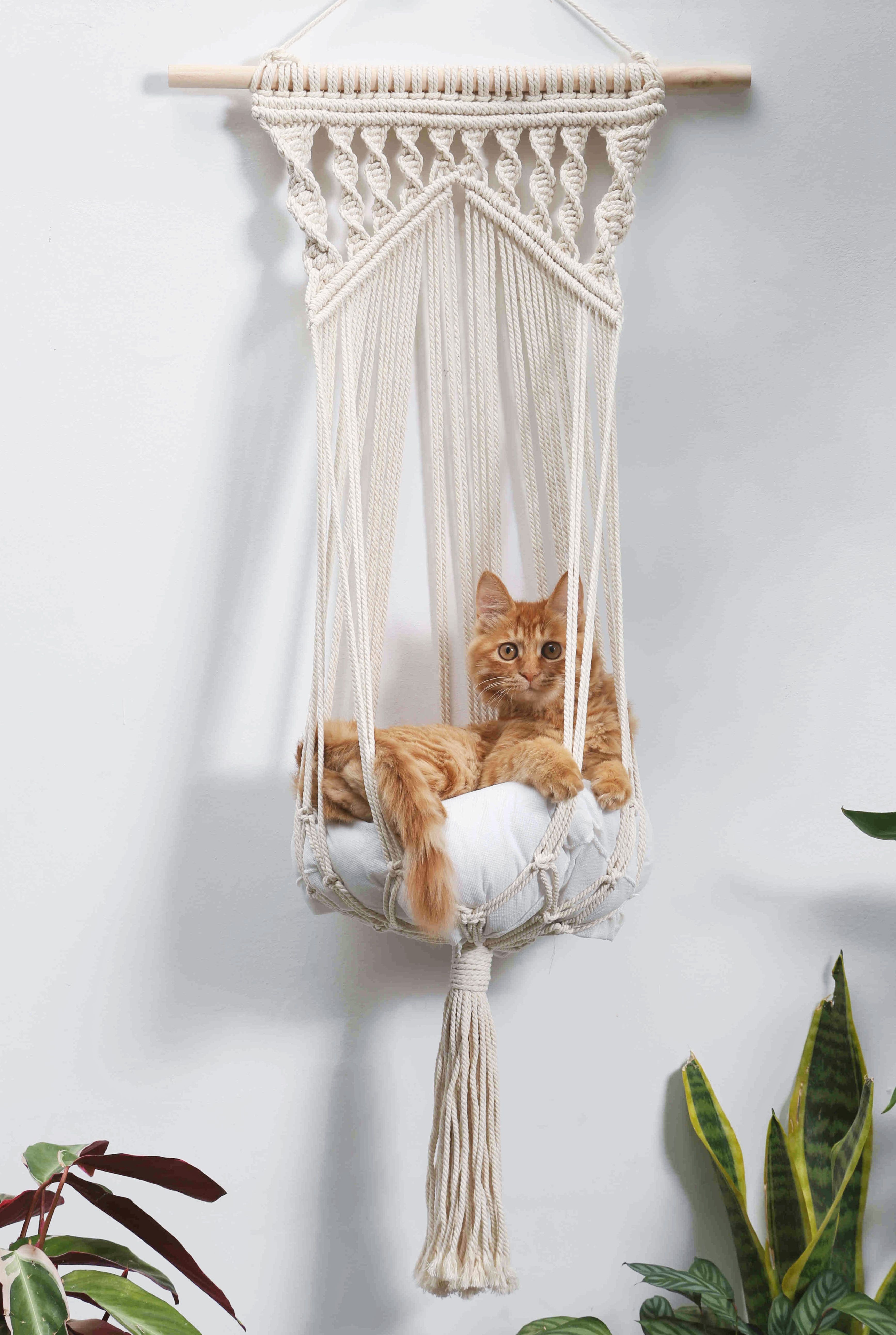 Macrame Cat Hammock Woven Wall Hanging Dog Bed Dip Dye Macrame Etsy In 2020 Woven Wall Hanging Diy Stuffed Animals Cat Hammock