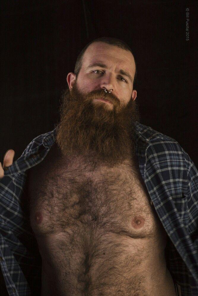 Still chubby gay bears brandon and logan consider