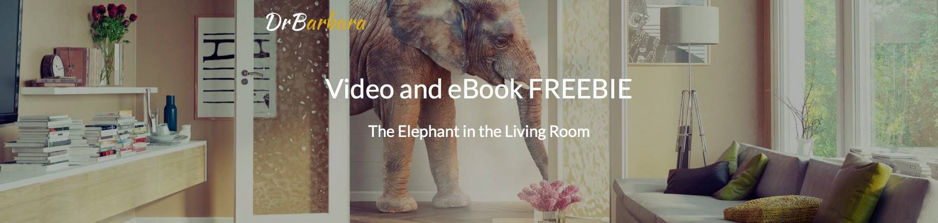 A Free Video And E Book There An Elephant In The Living Room
