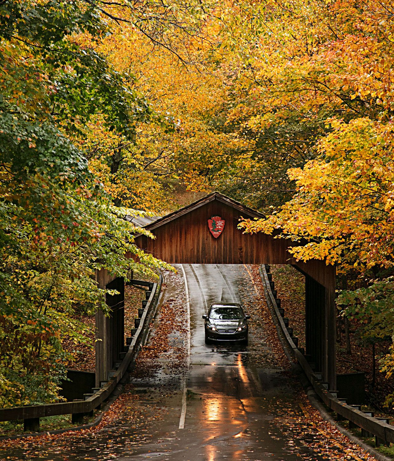 The Ultimate Fall Road Trip on Michigan's M-22