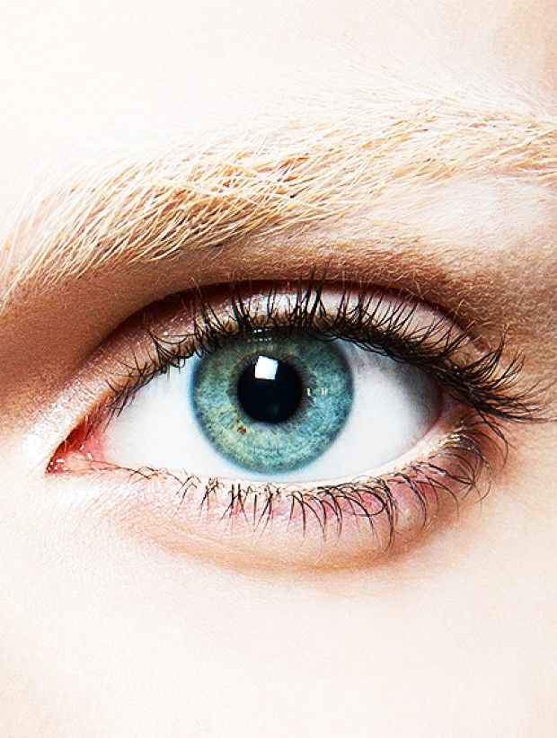 How To Tint Your Own Eyelashes For 17 Eyes 001 Pinterest