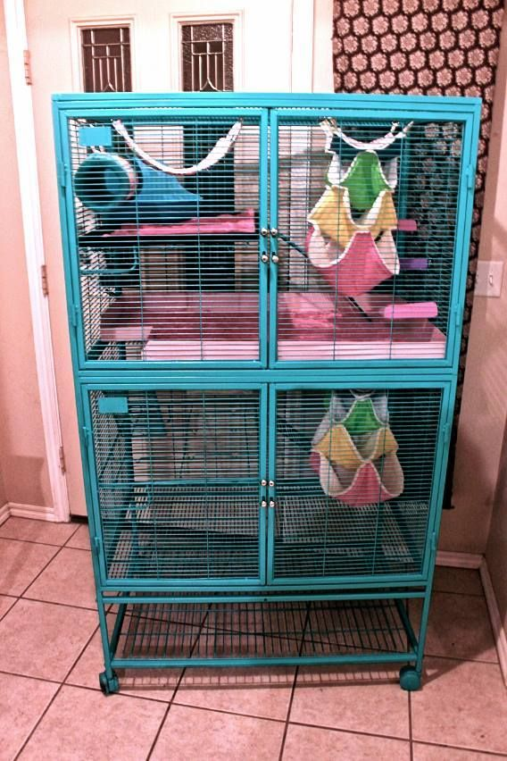 Beautiful And Spacious Ferret Nation Cage Setup I Love The Raised Wooden Ledges They Re Perfect For Stopping Poops Critter Nation Cage Pet Rats Pet Rat Cages