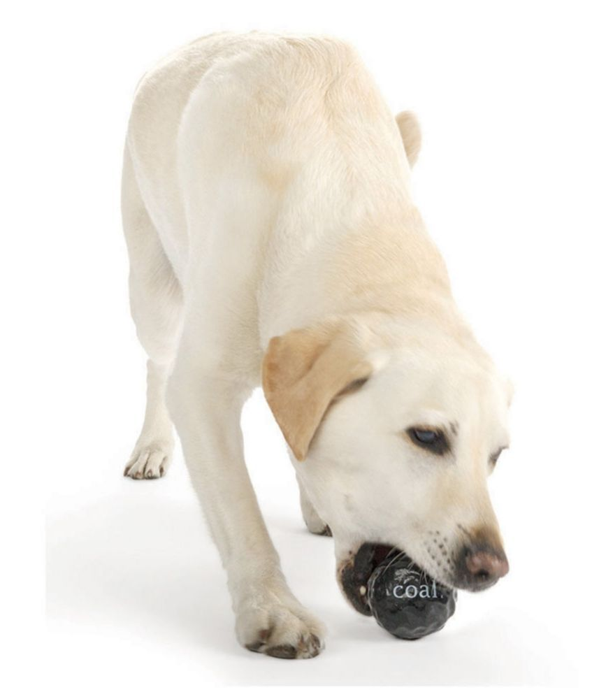 Planet Dog Orbee Tuff Coal Dog Toy With Images Dog Toys