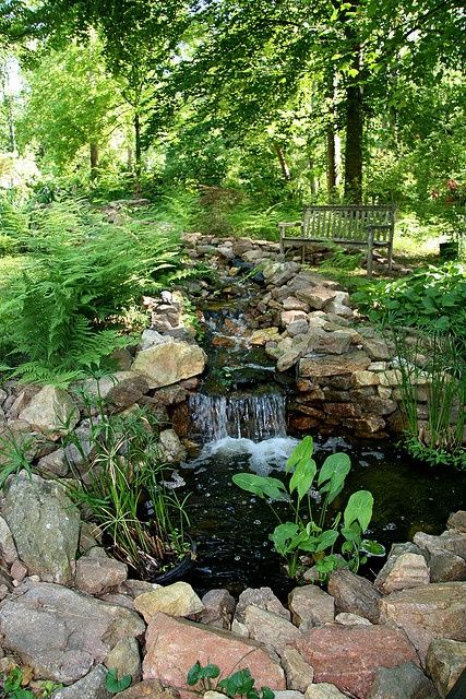 Picture Of small yet adorable backyard pond ideas for your garden 26