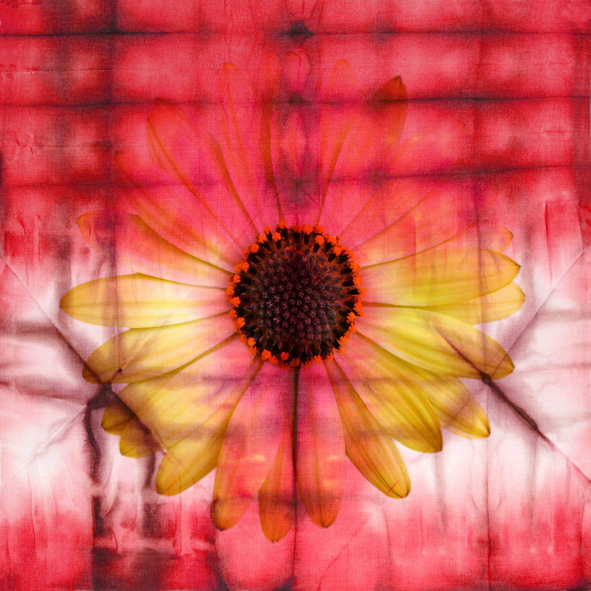 Glowing Sunflower Graphic Art on Premium Wrapped Canvas