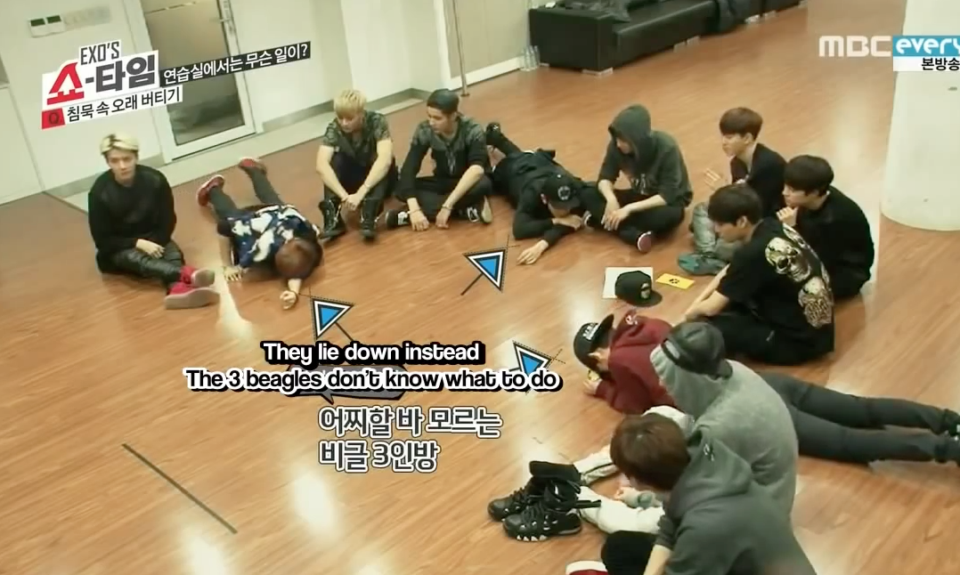 5 Reasons Why Exo S Beagle Line Is Called The Beagle Line Beagle Exo Showtime Beagle Puppy
