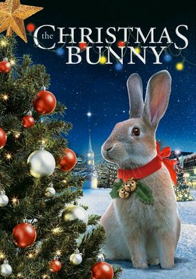The holiday spirit warms forlorn hearts in this touching family drama about Julia, a young foster child who finds a wounded rabbit on Christmas Eve and takes it to the Bunny Lady, a lonely woman who runs an animal shelter on her farm.