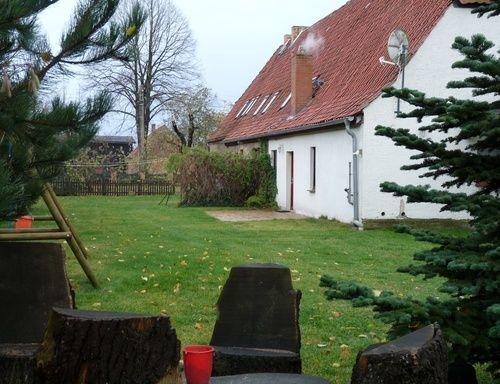 Ferienwohnung Roggow Krummer See Plants Tree Tree Trunk