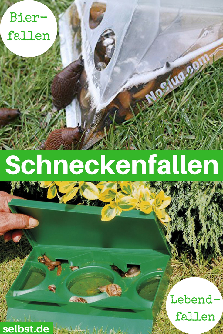 Schneckenfalle Pflanzen Gegen Schnecken Nacktschnecken Schnecken