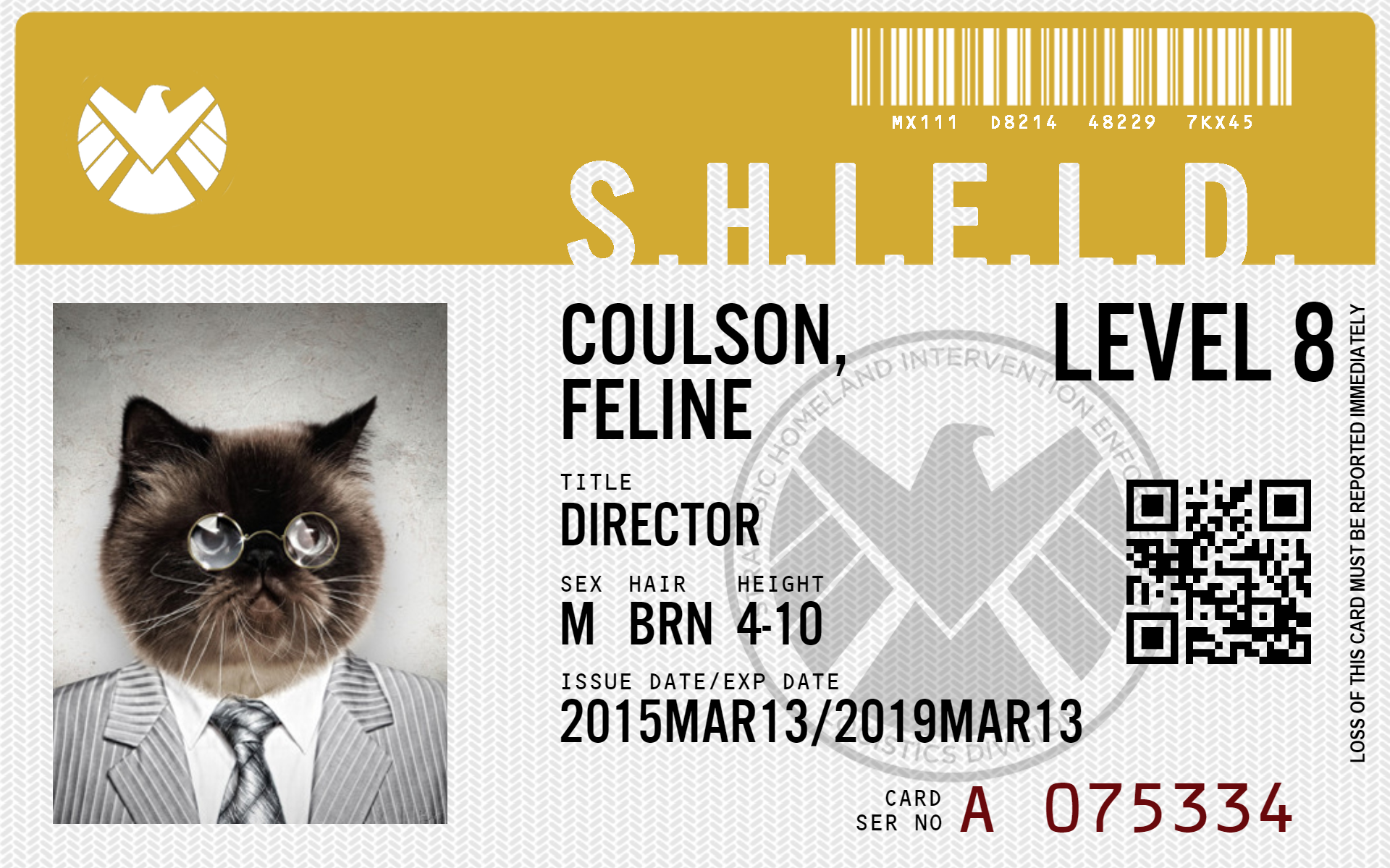 Make Your Own Agents Of S H I E L D Id Id Card Template Agents Of Shield Card Template