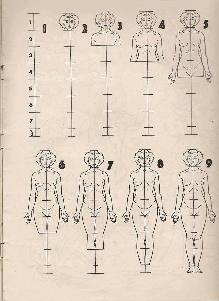 Pin de Angeline Metoxen en interesting!!! | Pinterest | Anatomía ...