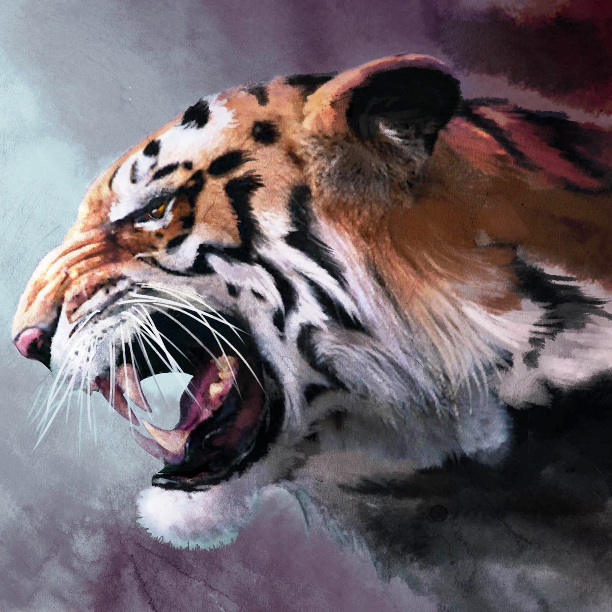 Angry Tiger Painting 2048x2048 Jpg 2048 2048 Tiger Wallpaper Tiger Art Pet Tiger