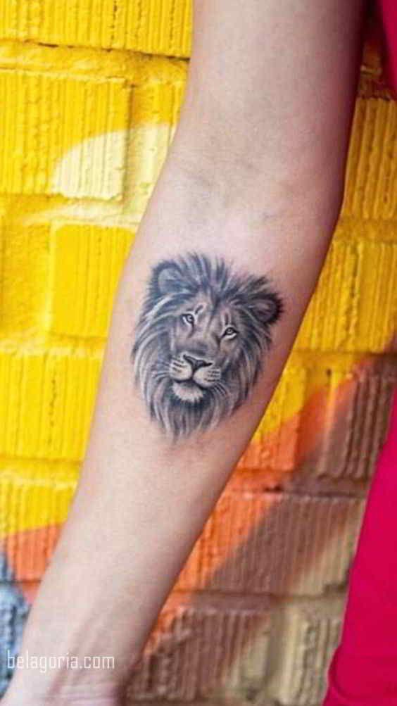 Tatuajes Del Rey Para Las Reinas Uno De Los Clasicos Del Mundo Del Tatuaje Los Tatuajes De Leones Pero Tatuaje Leon Pequeno Brazos Tatuados Tatuajes De Leon